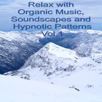 Relax With Organic Music, Soundscapes and Hypnotic Patterns Vol.1 — сборник