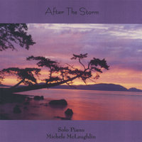 After The Storm — Michele McLaughlin