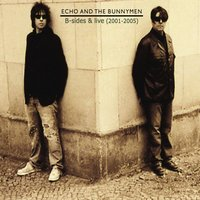 B-Sides and Live (2001 - 2005) — Echo and the Bunnymen