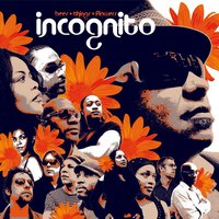 bees + things + flowers — Incognito