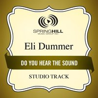 Do You Hear the Sound (Studio Track) — Eli Dummer