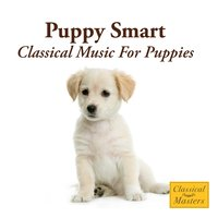 Puppy Smart - Classical Music For Puppies — St. Martin's Orchestra