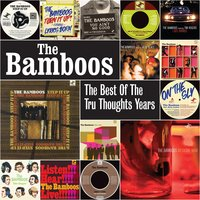 The Best of the Tru Thoughts Years — The Bamboos