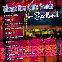 Vibrant New Celtic Sounds from Scotland — Ceolbeg