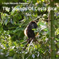 The Sounds of Costa Rica, Vol. 1 — I-Sight Records