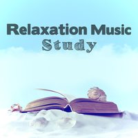 Relaxation Music: Study — Best Relaxation Music