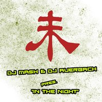 In the Night — DJ Auerbach, Dj Mash