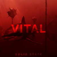 Vital — Solid State