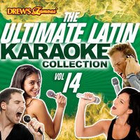 The Ultimate Latin Karaoke Collection, Vol. 14 — The Hit Crew