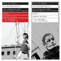 The Crackdown Project, Vol. 1 & 2 (Sold Out to Disco / Darkness Restored) — Billie Ray Martin