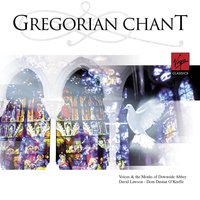 Anon: Gregorian Chant Music — Monks And Choirboys Of Downside Abbey