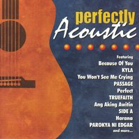 Perfectly Acoustic — сборник