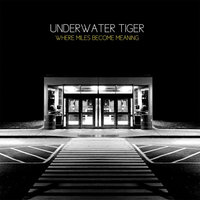 Where Miles Become Meaning — Underwater Tiger