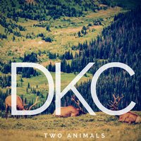Two Animals — DKC