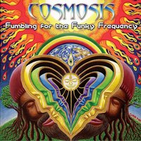 Fumbling For The Funky Frequency — Cosmosis