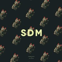 SDM — Gillette, Fabrikate