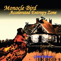 Accelerated Entropy Zone (Global Release) — Moncole Bird