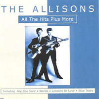 All The Hits Plus More — The Allisons, Allisons