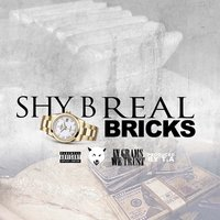 Real Bricks — Shy B.