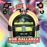 Select Trax Vol. II [Bob Gallarza Presents] — сборник