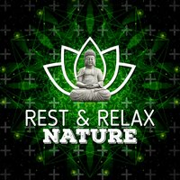 Rest & Relax Nature — Rest & Relax Nature Sounds Artists