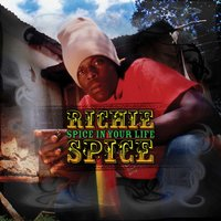 Spice In Your Life — Richie Spice