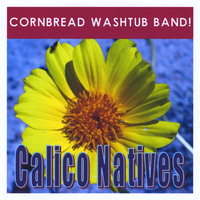 Calico Natives — Cornbread Washtub Band