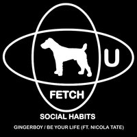 Gingerboy / Be Your Life — Social Habits