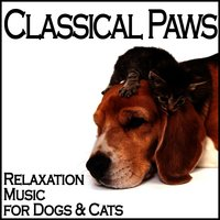 Classical Paws - Relaxation Music for Dogs & Cats — сборник