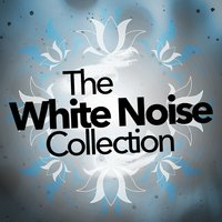 The White Noise Collection — White Noise 2015