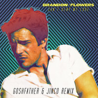 Can't Deny My Love — Brandon Flowers