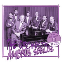 The Groove Collection — Ambros Seelos Orchestra