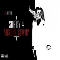 Sorry 4 Mister Guwop — Lil Mister