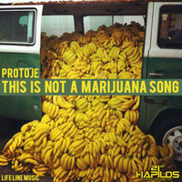 This Is Not a Marijuna Song — protoje