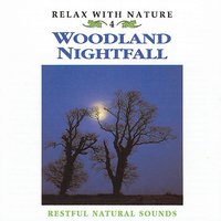 Relax with Nature, Vol. 4: Woodland Nightfall — Natural Sounds
