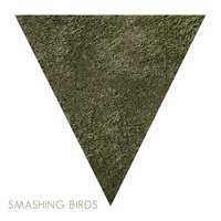Black Ashes Over Snowy Hills — Smashing Birds