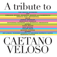 A Tribute To Caetano Veloso — сборник