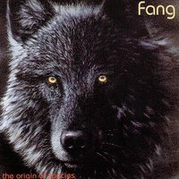 The Origin Of Species — Fang