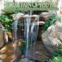 Fountain Of Youth - Classical For Feeling & Looking Younger — сборник