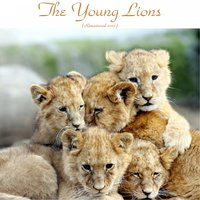 The Young Lions — Bobby Timmons, Wayne Shorter, Lee Morgan, Albert Heath, Frank Strozier, Louis Hayes