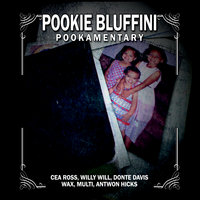 Pookamentary — Pookie Bluffini