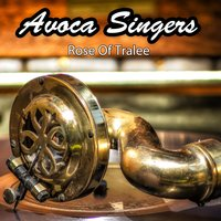 Rose Of Tralee — Avoca Singers