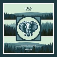 Ellipse — Juan