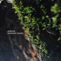 Dancing Grass — Atmoss