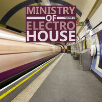 Ministry Of Electro House, Vol.12 — сборник
