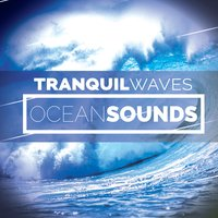 Tranquil Waves: Ocean Sounds — Beach Waves Specialists