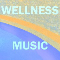 Music for Wellness Centers, Vol. 5 — Aaron Anderson