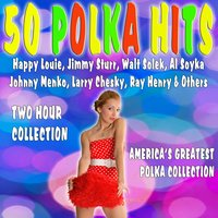 50 Polka Hits — Larry Chesky, Walt Solek, Ray Henry, Happy Louie, Jimmy Sturr, Al Soyka, Johnny Menko, and others