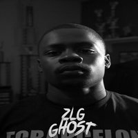 Make Sure — ZLG Ghost