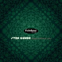 Baby Without You — Sven Gunde